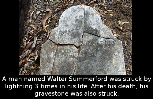 Image result for walter summerford