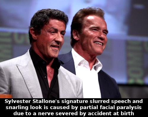 Sylvester_Stallone__Arnold_Schwarzenegger