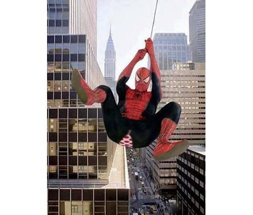 Spiderman-Pant